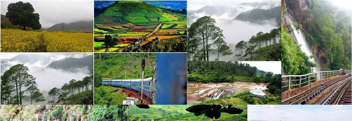 Araku Valley Tourism